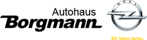 borgmann-logo_2